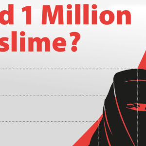 Inseratekampagne «Bald 1 Million Muslime?»